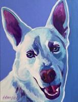 Husky - Joaquin Fine Art Print