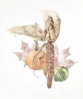 Autumn Medley Fine Art Print