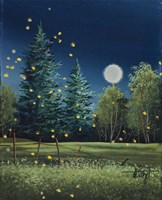 Summer Night Fine Art Print