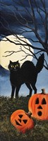 Black Cat 2 Fine Art Print