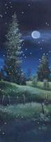 Meadow at Night Fine Art Print