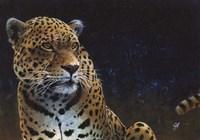 Jaguar Fine Art Print