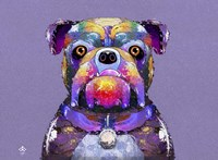 Bulldog I Fine Art Print