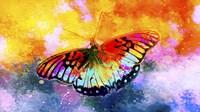 Butterfly III Fine Art Print