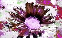 Flower XIV Fine Art Print