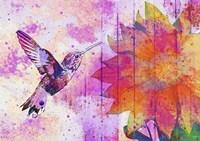 Hummingbird XVII Fine Art Print