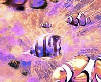 Undersea LVI Fine Art Print