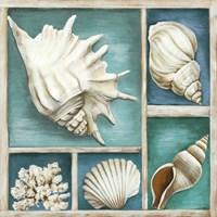 Collection of Memories III Fine Art Print