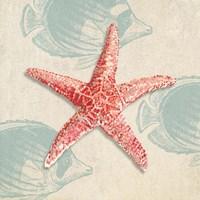 Ocean Gift I Fine Art Print