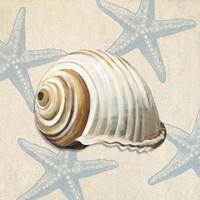 Ocean Gift III Fine Art Print