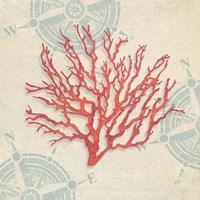 Ocean Gift IV Fine Art Print