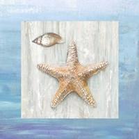 From the Sea II Fine Art Print