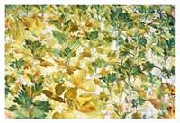 Autumn Tapestry Fine Art Print