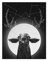 Banyon Deer Fine Art Print