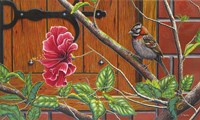 The Sparrow Who Visit Your Window Fine Art Print