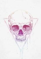 Skull In Triangle Fine Art Print