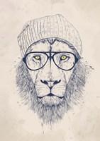 Cool Lion Fine Art Print