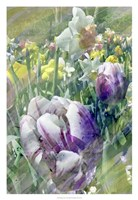 Spring at Giverny I Fine Art Print
