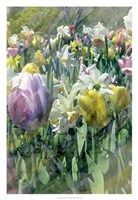 Spring at Giverny II Fine Art Print