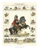 Equestrian Display I Fine Art Print