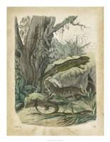 Nature's Gathering V Fine Art Print