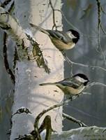 Chickadees At Dawn Fine Art Print