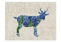 Flower Farm Goat Fine Art Print