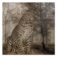 Wild Jungle 1 Fine Art Print