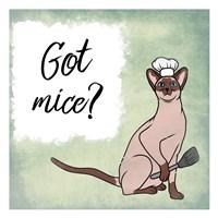 Got Mice Fine Art Print