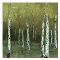 Look In The Woods Fine Art Print