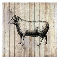 Farm Life 2 Fine Art Print