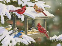 Feasting at the Feeder Fine Art Print