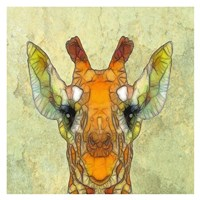 Abstract Giraffe Calf Fine Art Print