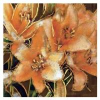 Apricot Dream I Fine Art Print