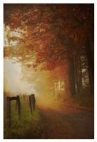 Come to the Light Fine Art Print