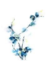 Blue Blossoms Fine Art Print