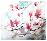 Magnolia, Spring Fine Art Print