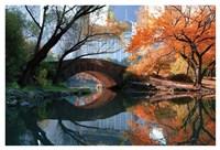 Gapstow Bridge, Fall Fine Art Print