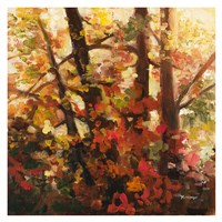 Backlit Leaves III Fine Art Print