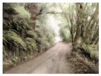 Lost Coast Road Fine Art Print