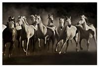 Dream Horses Fine Art Print