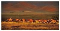 Montana Dreaming Fine Art Print
