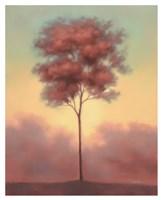 Solitude II Fine Art Print