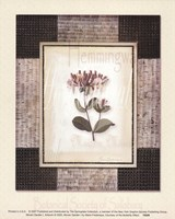 Woven Garden I Fine Art Print