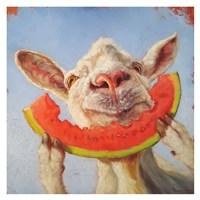 Summer Treat Fine Art Print