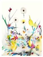 Summer Garden VI Fine Art Print