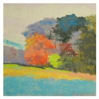 Fox Farm Woods Fine Art Print