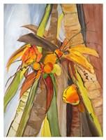 Palm IV Fine Art Print