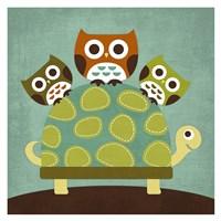 Three Owls on Turtle Fine Art Print