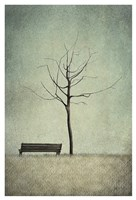 The Cherry Tree - Winter Fine Art Print